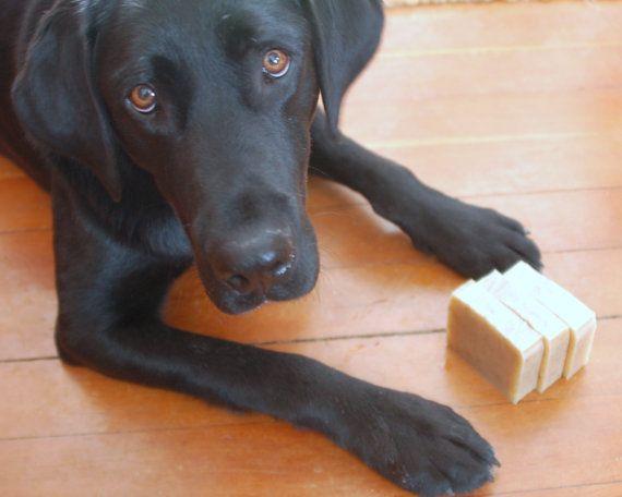 Bo's new soap from Etsy! Best Dog Ever  organic dog shampoo natural pet care by mirasolfarm