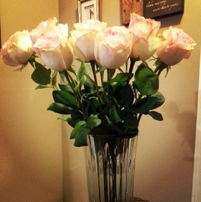 Birthday roses from my husband. :)