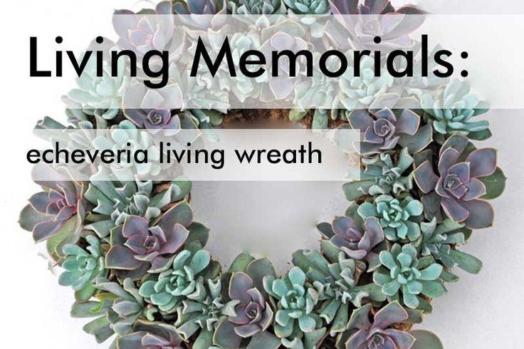 Living Sympathy Wreath