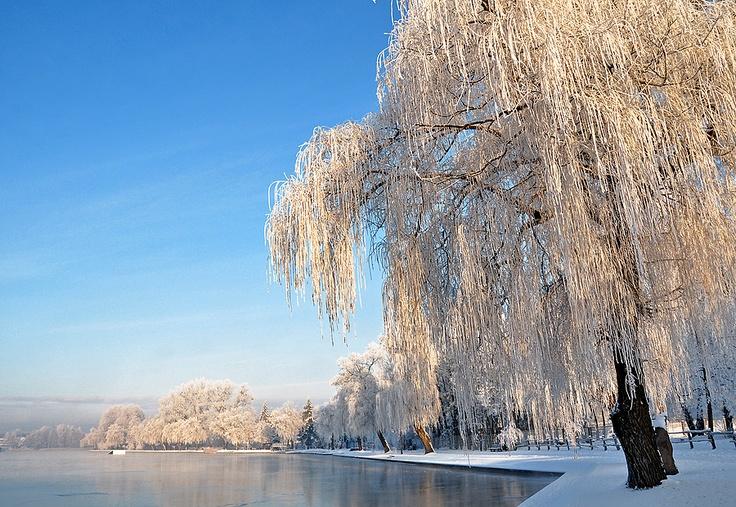 Augustow zima