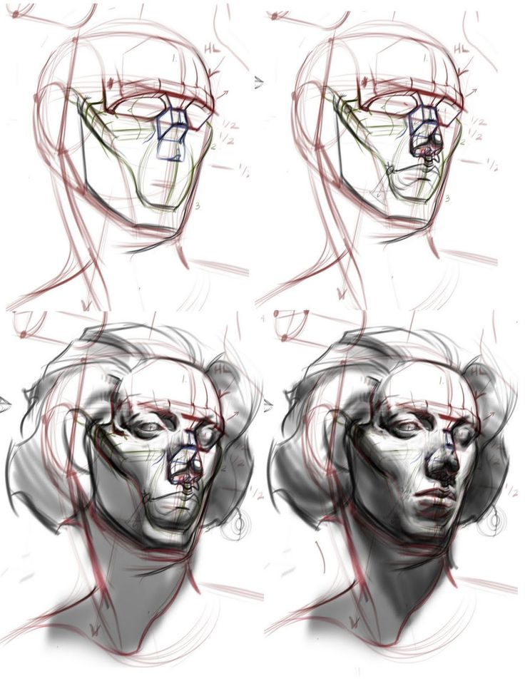 http://figuredrawingdotinfo.blogspot.com/search/label/Heads