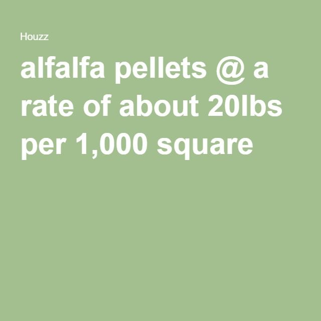 Good and cheap organic lawn fertilizer! alfalfa pellets @ a rate of about 20lbs per 1,000 square feet (Or up to 40lb/1,000 square feet...just don't smother).  Can use multiple times a year.