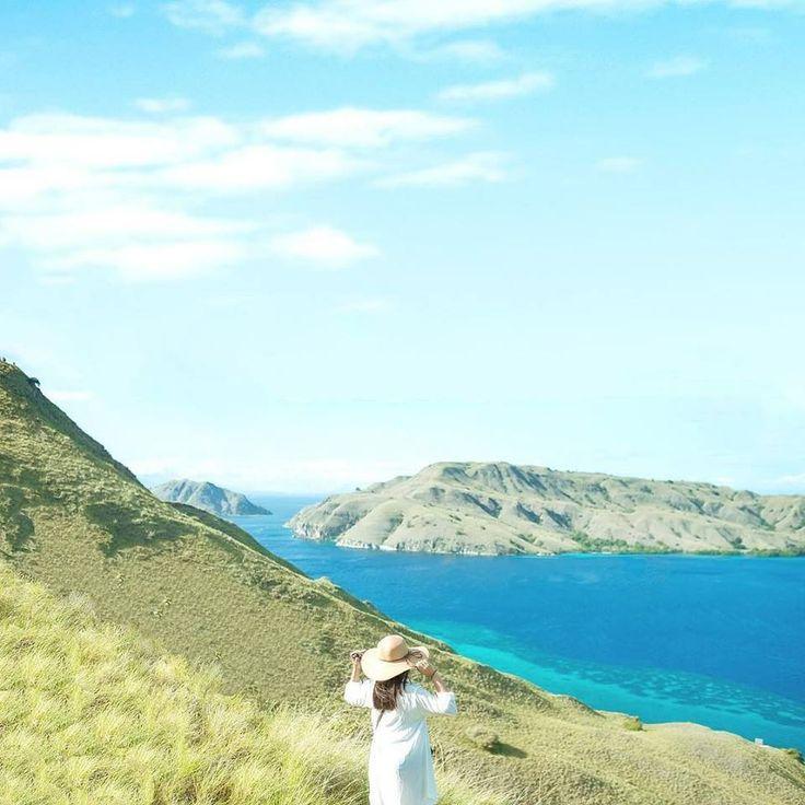 Setiap petualangan adalah kesempatan untuk belajar sesuatu yang baru.  Selamat Pagi Semuanya.. . . Location : Gili Laba, Komodo National Park Photo by : @bejoktefa . . #gililaba #tamannasionalkomodo #flores #tukangjalan #tukang_jalan #tukangjalantrip #PesonaIndonesia #ExploreNusantara #indonesia #komodotrip #explorekomodo #jalanjalan #traveling #tour #sailingkomodotrip #pulaupadarflores #gililabakisland #pulaurinca #travelife #travelphotograph #instagood #instadailyphoto