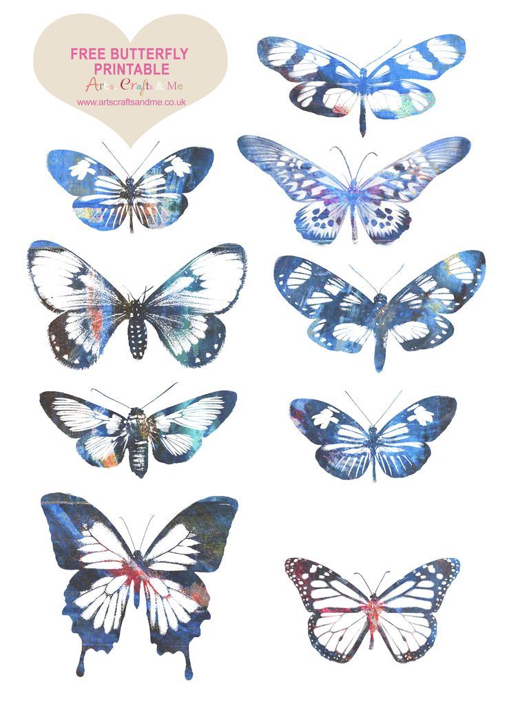 lovely arty butterfly images - Download the Free Butterfly Printable http://www.artscraftsandme.co.uk