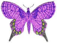 Butterfly Glitter gifs