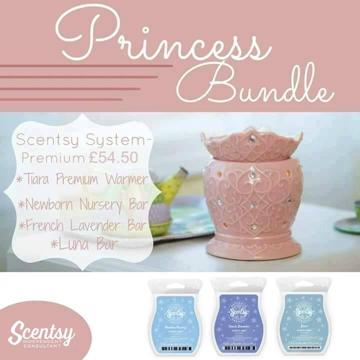 Scentsy Bundle. Combine and save for little princes. 1 warmer + 3 Scentsy bars…