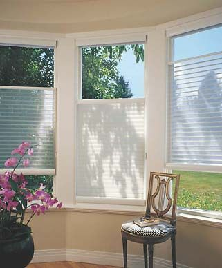 Again great Light and privacy options on these blinds.