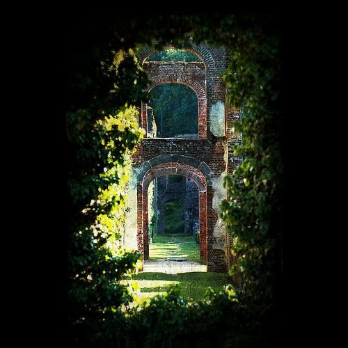 followthewestwind:  beautiful-portals:  alucardoo:  like—a—million—suns:  (via llbwwb)