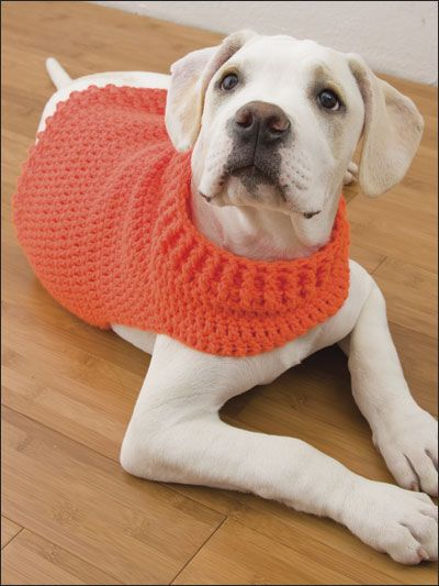 Hunter's Dog Sweater - Technique - Crochet - Stitch this super easy, non-restrictive sweater for your energetic best friend. - Fits medium size dog. Made with medium (worsted) weight yarn and size I (5mm) hook. - Skill Level: Easy