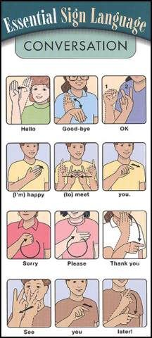 "Conversation Essential Sign Language - whoever things that ""sorry"" is a conversation essential has some bigger problems! Haha"