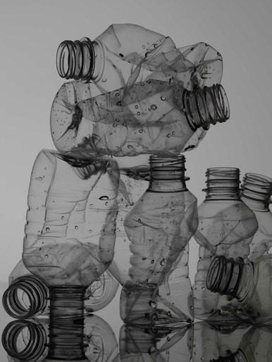 Judy Casey - Prop/Set Design - Christine Mottau - Still Life