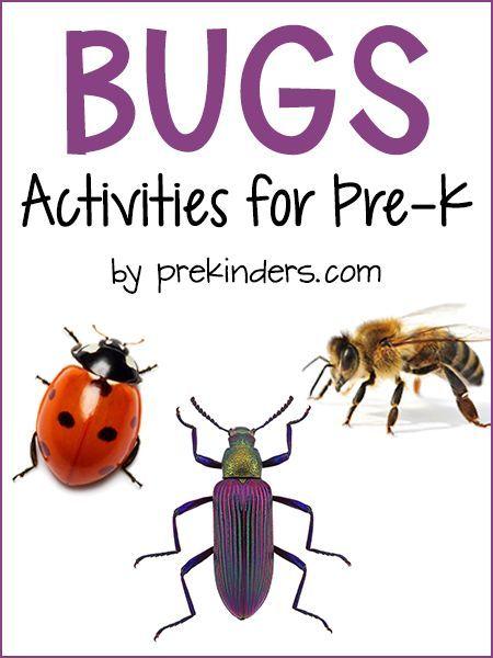 Bug Insect Activities for Pre-K, Preschool