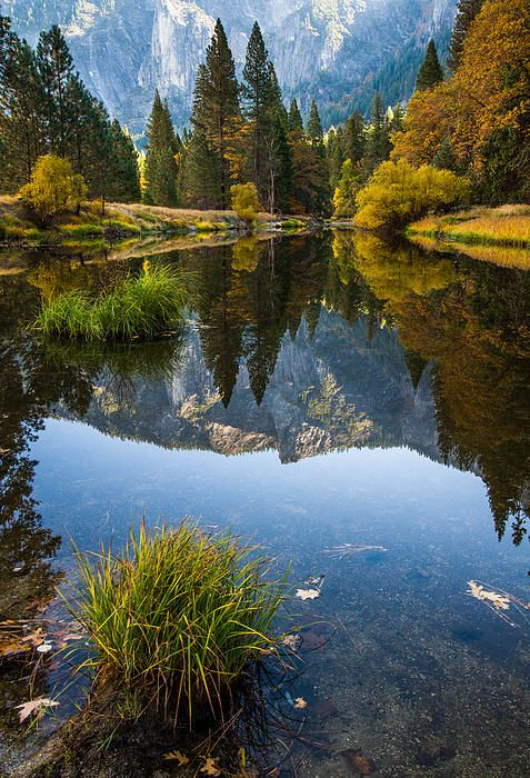 Fall in Yosemite National Park, California, photo by About Light Images
