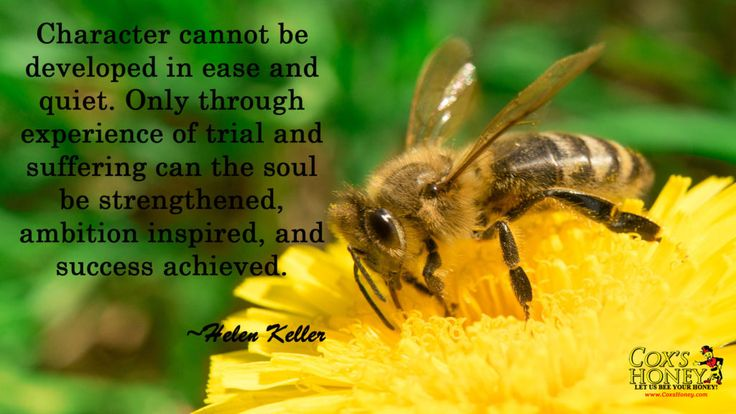 """Quote of The Week for June 26, 2017. Character Quote by Helen Keller. """"Character cannot be developed in ease and quiet. Only through experience of trial and suffering can the soul be strengthened, ambition inspired, and success achieved."""" ~Helen Keller"""