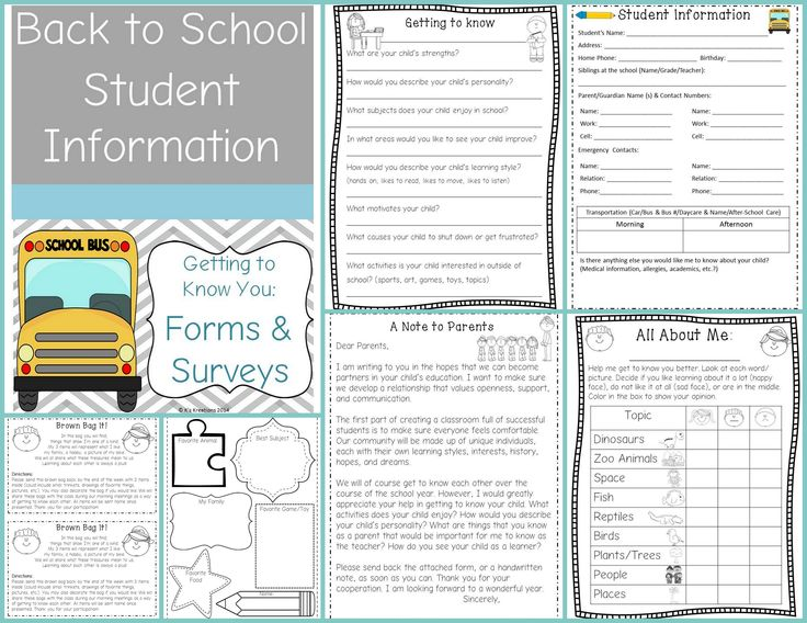 "Back to School FREEBIE- Includes Student Information Forms (English & Spanish), Parent Letter & Survey, Student Activity Page (Perfect for Open House), ""Brown Bag It"" Ice Breaker, Student Interest Inventory for primary students"