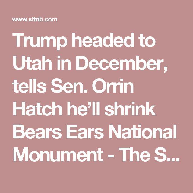 Trump headed to Utah in December, tells Sen. Orrin Hatch he'll shrink Bears Ears National Monument - The Salt Lake Tribune