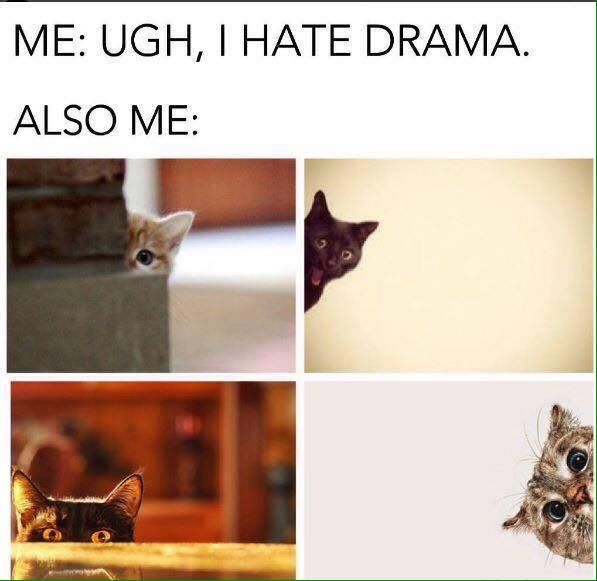 Pin By David Mettler On Lol Cats Challenges Funny Funny Animals Relatable Meme