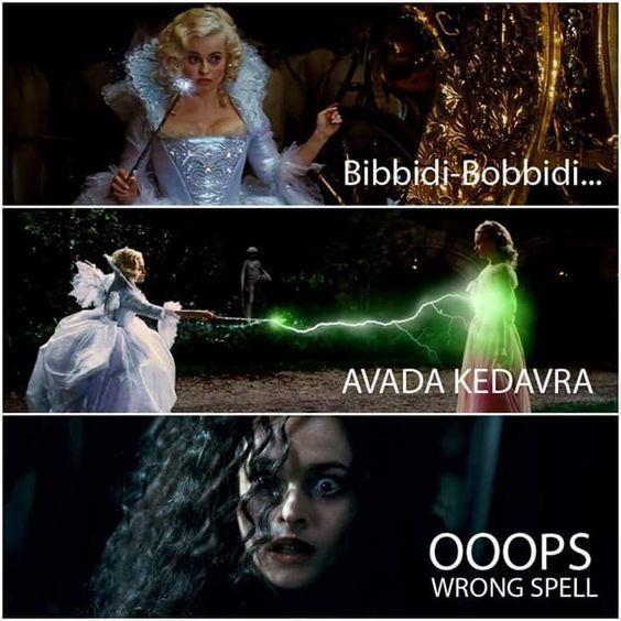 Harry Potter Memes – Nur ein wahrer Potterhead kan…