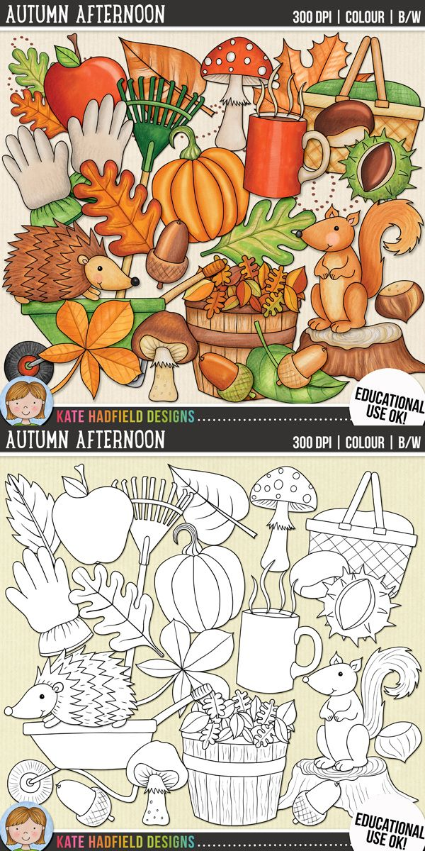 Autumn/ fall clip art for teachers! Includes coloured clipart + black and white outlines all at 300 dpi for highest quality printing for your teaching resources and projects! | Hand-drawn clip art by Kate Hadfield Designs at Teachers Pay Teachers