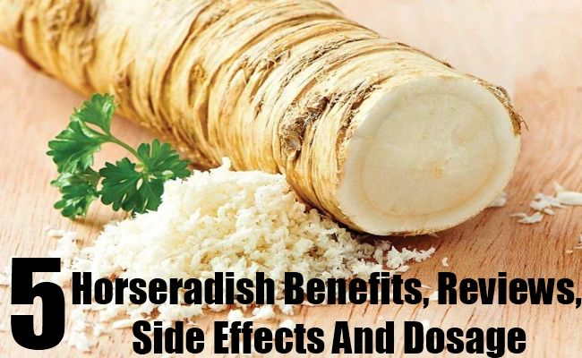 5 Horseradish Benefits, Reviews, Side Effects And Dosage