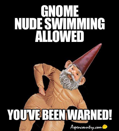 Funny Gnome Meme. Traveling Gnome Ward Bound Tells Troll Jokes. Gnome Kidding! Page 15.