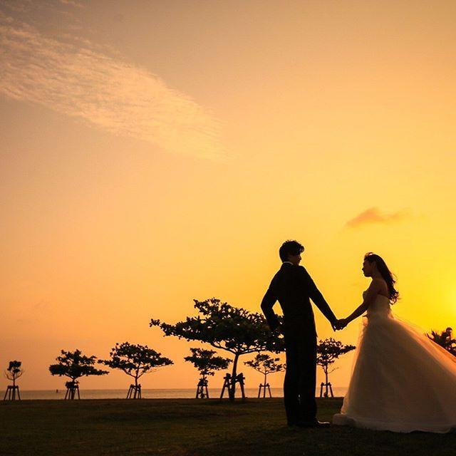しらすじゃなくてすいません… ・ 私事ですが去年の今日、4月17日は沖縄で家族挙式の日でしたぁ💐✨ 7月に都内で披露宴を行い、すぐに引越しもあり忙しい日々を過ごしていましたが、全てが終わりなんとなく寂しい日々を過ごしていた時にしらすを飼う事になりました🐶💕 しらすが来てからは、できなくなることや大変な事もありますが、家族の会話が増えたり、友人が遊びに来てくれたり楽しい事がたくさんあります💕仕事で疲れた時もしらすに夫婦揃って癒されてます♡ これからも旦那さんとしらすと仲良く過ごしていければ思います💕 ・ #しらす#生後6ヶ月#仔犬#結婚式から1年#ありがとう#shirasutagram#dogstagram #instadog#ミックス犬#mixdog#マルプー #トイプードル#toypoodle#マルチーズ#maltese#犬のいる暮らし#犬との生活#マルプー連合#フワモコ部#愛犬#家族#癒し#love #east_dog_japan#todayswanko