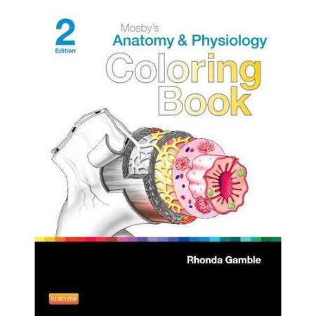 Ocular Anatomy Coloring Book : The 25 best anatomy and physiology book ideas on pinterest