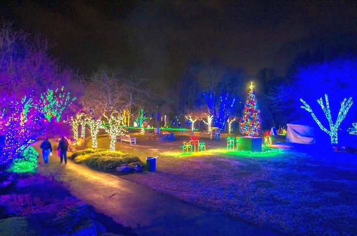 Meadowlark Gardens hosts a walking tour of animated Christmas lights with a nature theme. See the dates, times, address, admission information and more.