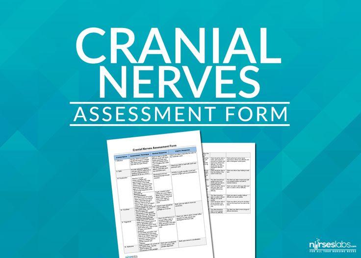 Ponad 25 najlepszych pomysłów na Pintereście na temat tablicy - nursing assessment template