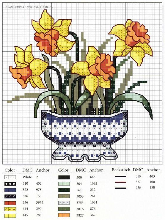 vaso di giunchiglie