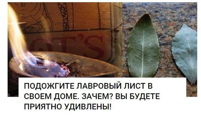 Каждый дом обладает своим ароматом. У кого-то он пахнет духами или кофе, у…