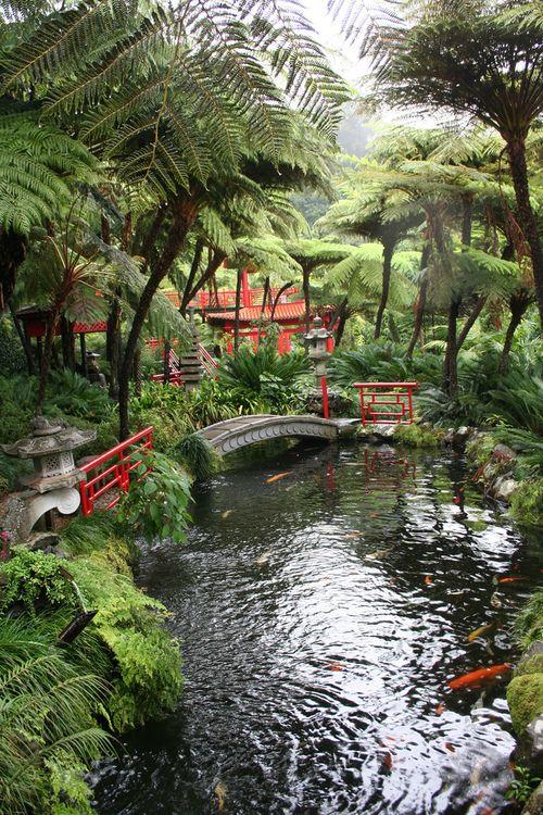 Japanese Garden Backyard Asian Landscape