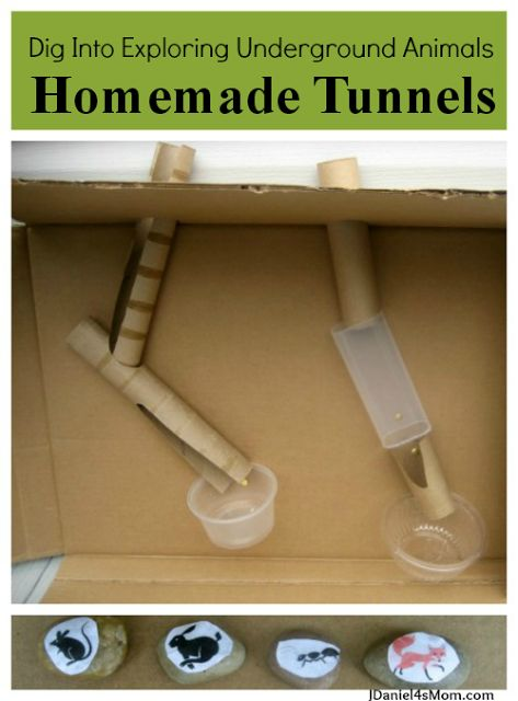 Creating an underground tunnel system for animals with recycled materials. What fun!