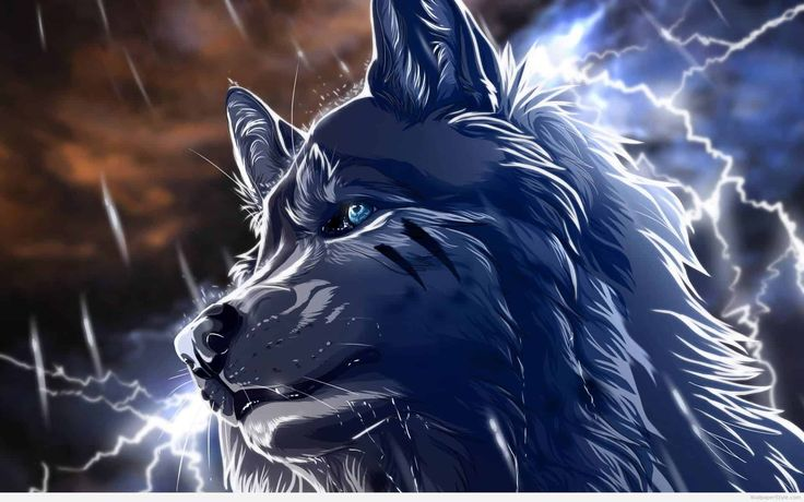 anime wolf wallpapers - http://wallpaperstyle.com/anime-wolf-wallpapers-262/ #Anime, #Wallpapers anime, wallpapers