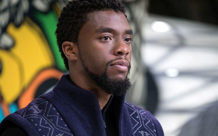 Lataa kuva Musta Pantteri, Kapteeni Amerikka, Sisällissodan Wakanda, Chadwick Boseman, Amerikkalainen näyttelijä