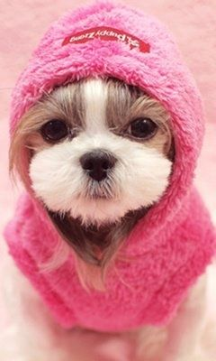Cute or what???