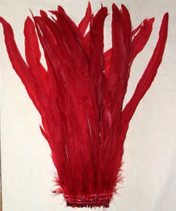 """25 RED Rooster Tail Feathers 10-12"""" Strung #15.95 w/ FREE SHIPPING w/in USA #roosterfeathers #feathers #red"""