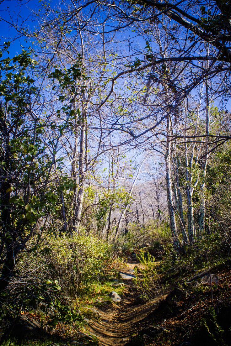 Cerro El Roble, salida con Fototrekking