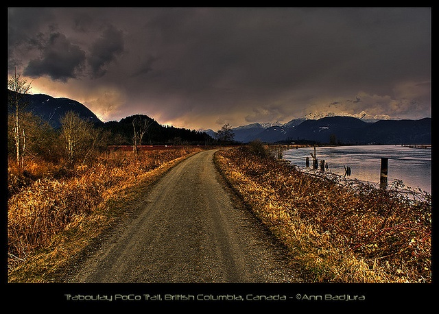 Traboulay PoCo Trail in Port Coquitlam, BC, Canada.  A photo taken by myself at this gorgeous place!