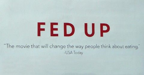 "Fed Up with ""Fed Up."" A critique of the reductionist approach."