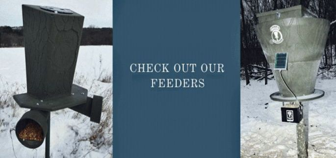 Choosing the Best Deer Feeder