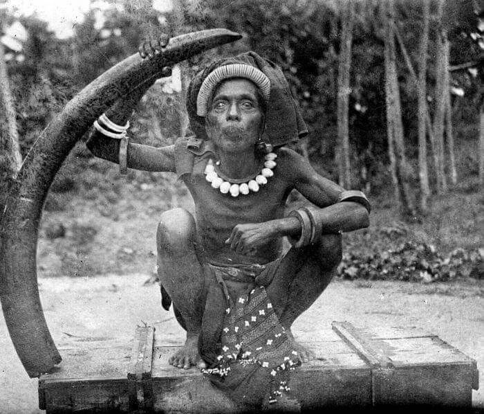 Tanimbarese man with ivory imported from Sumatra. Ivory-based ornaments were important in wedding ceremonies.