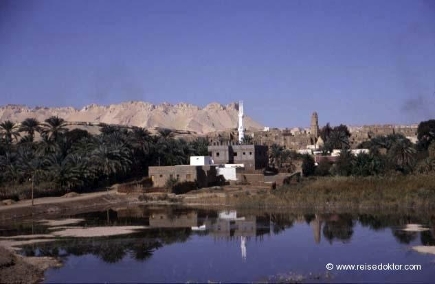 Ägypten Oase  www.reisedoktor.com