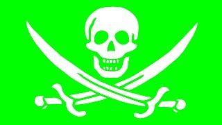 Piraterij is een double edges sword, hoewel mensen die hard aan software werken geld verdien, het geld dat de piraten hadden betaald voor de producte als ze het gekocht hadden was toch niet in de zakken gekomen van de mensen die eraan werkten en ook een aantal software producten zouden nooit zo populair geworden zijn zonder piraterij