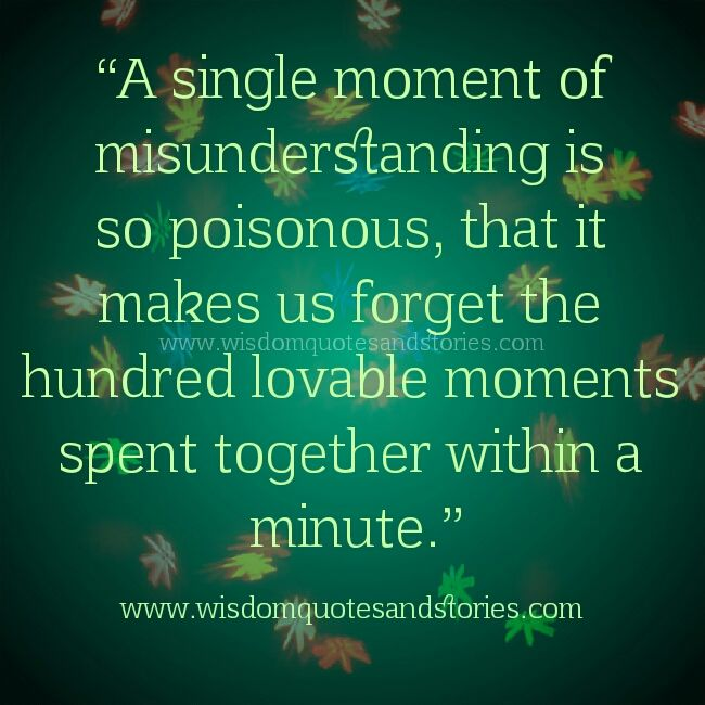 single moment of misunderstanding makes us forget hundred lovable moments spent together - Wisdom Quotes and Stories