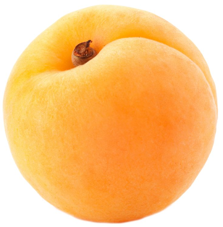 Large Apricot PNG Clipart
