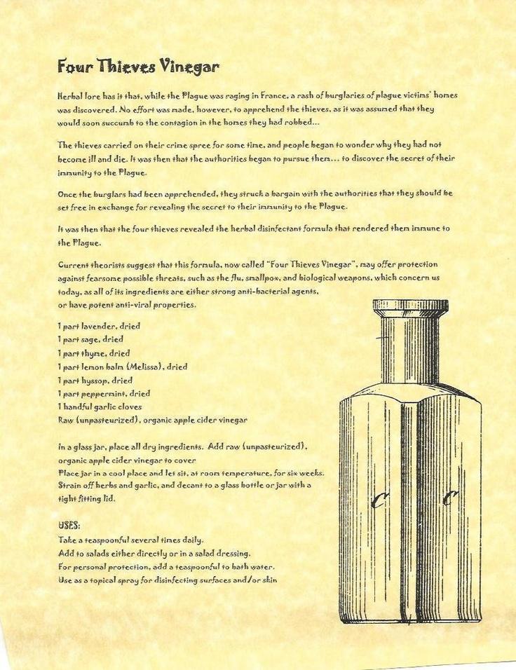 Book of Shadows:  Four Thieves Vinegar.