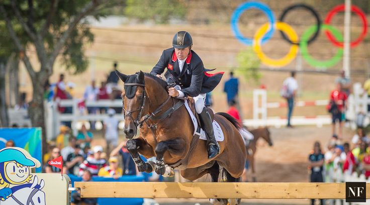 — Nick Skelton & Big Star compete at Rio 2016. #olympics #olympicgames #games #sport #equestrian