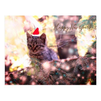 Happy New Year Postcard Kitten - Xmas ChristmasEve Christmas Eve Christmas merry xmas family kids gifts holidays Santa