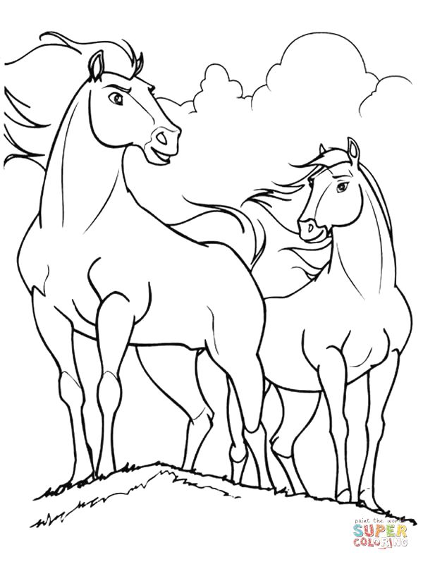 Bilderesultat for spirit the stallion of cimarron